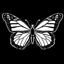 Procreate Inktober Day 5: Monarch